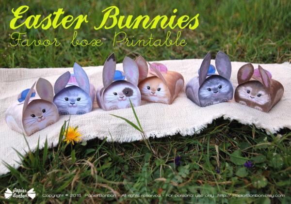 Les 6 boîtes lapins
