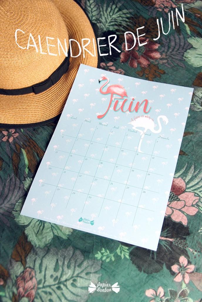 calendrier à imprimer gratuit Juin 2016 Flamand rose