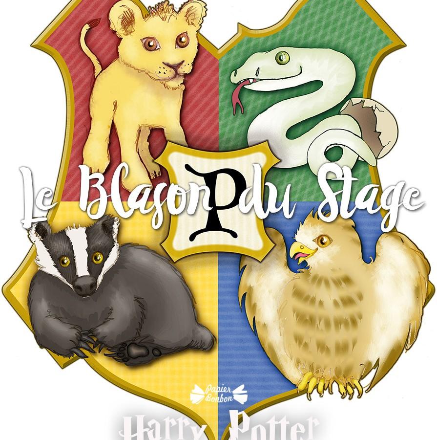 Anniversaire Harry Potter Idées Décorations Gâteau Jeux
