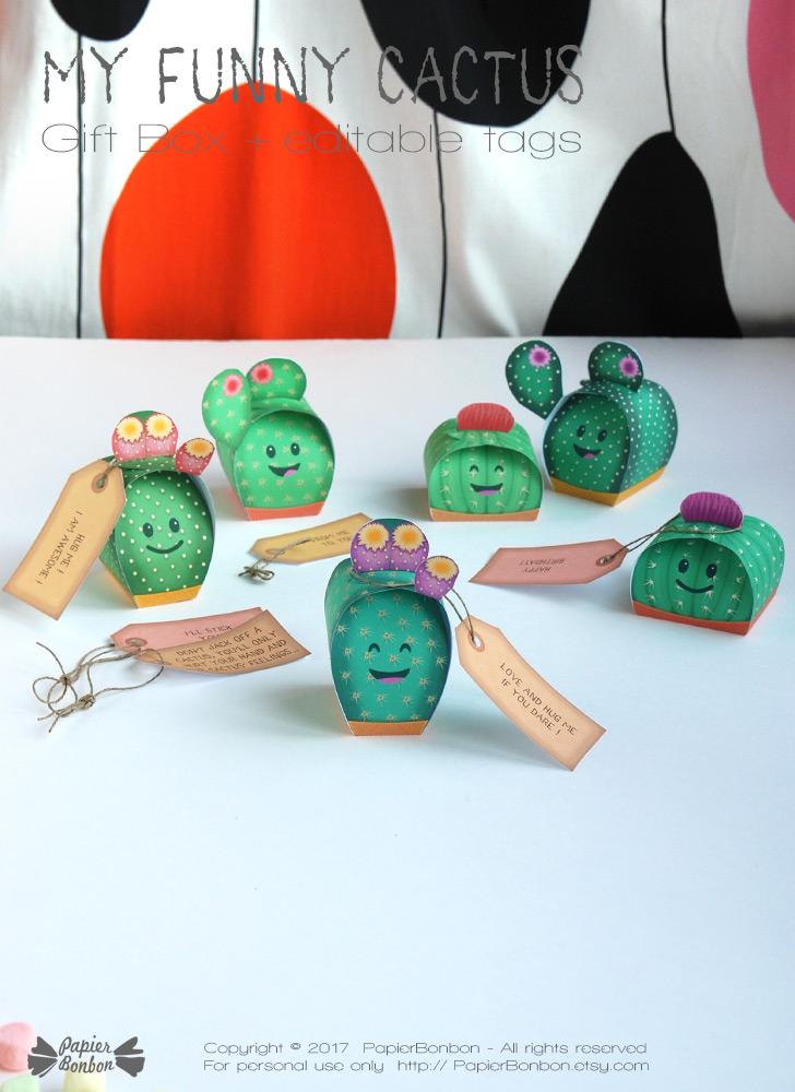 Boîtes cactus / Cactus gift box