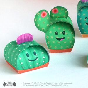 present-carre-PBcactus