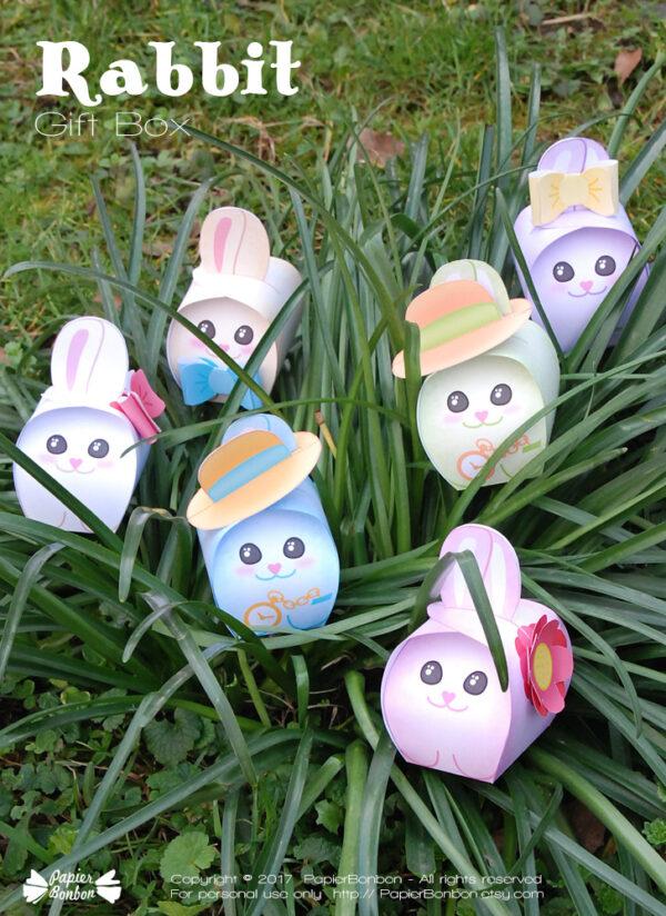 Rabbit Gift Box - Boîte lapin