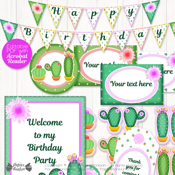 Décorations de Fête Cactus - Cactus decorations kit