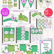 Décorations de Fête Cactus - Cactus decorations kit
