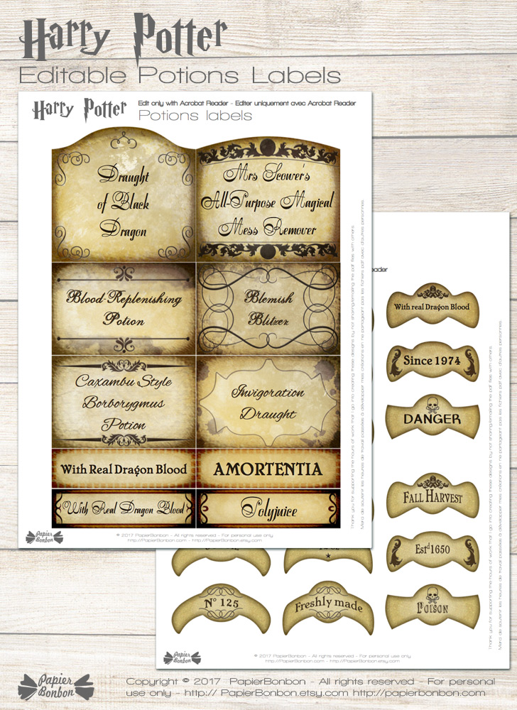 Noel Harry Potter Decoration
