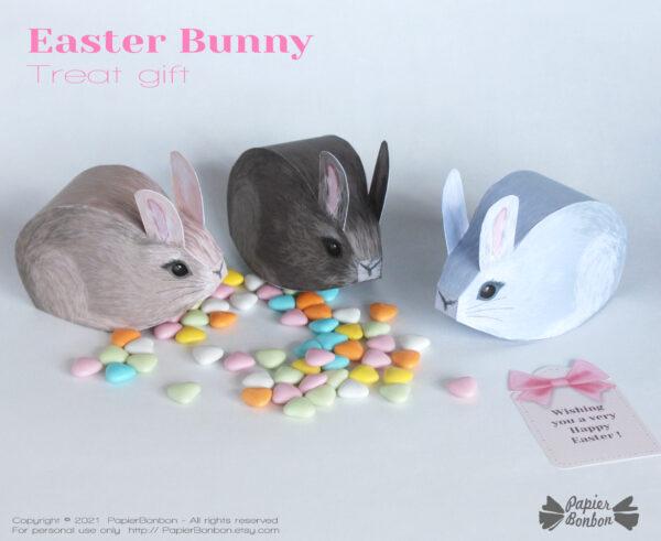 Boîtes lapin de Pâques - Easter bunny box